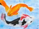 Kois (japanische Zierkarpfen), Klasse 6a